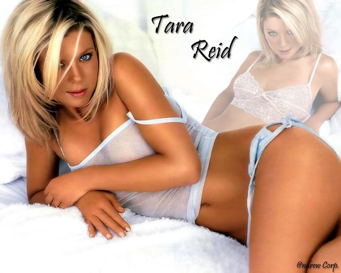 Tara Reid Wallpaper